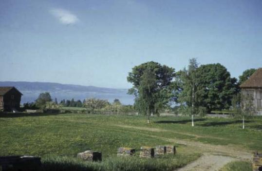 ringnes gård, ottestad